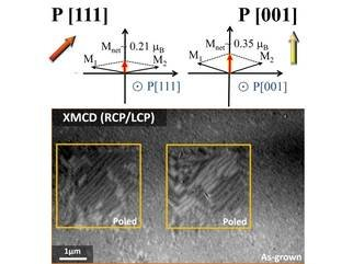The ability of electrically control of magnetism determines the potential for application in the area of magnetoelectronics, spintronics and high- frequency technologies. Scientists from the MPI CPfS recently dicovered a controllable way to electrically enhance the magnetism in highly strained multiferroic BiFeO3 thin films at room temperature.