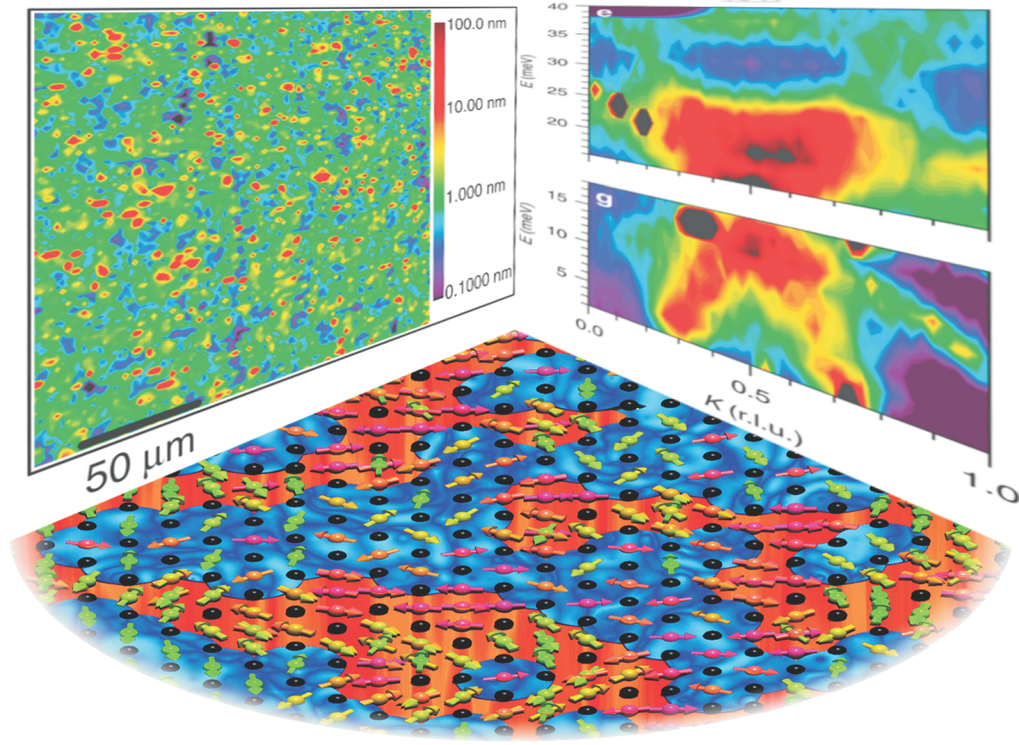 Fig. 1: Left: Our microdiffraction measurements reveal nano phase separation of charge ordered regions in layered cobaltates. Middle: A graphical presentation of our novel electronic and magnetic nano phase separation model. High-energy magnetic excitations can be only hosted in the undoped islands (red areas) with large exchange interactions J whereas the electron spins in the checkerboard charge ordered regions (blue areas) are not able to follow the high-energy excitations since they are coupled with much smaller J' << J. Right: Our neutron measurements reveal an hour-glass shaped magnetic excitation spectrum with an additional magnetic high-energy mode that could be expected from our new nano phase separation model but that has never been observed before in any hour-glass spectrum.