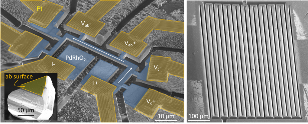 Figure 2: (left) PdRh02 microstructure (blue) with precise alignment to the crystal axes extracted and prepared from a macroscopic single crystal (inset) of the delafossite material. (right) Long narrow wire (L x W ≈ 18 mm x 10 µm) fabricated from an YbRh2Si2 crystal.