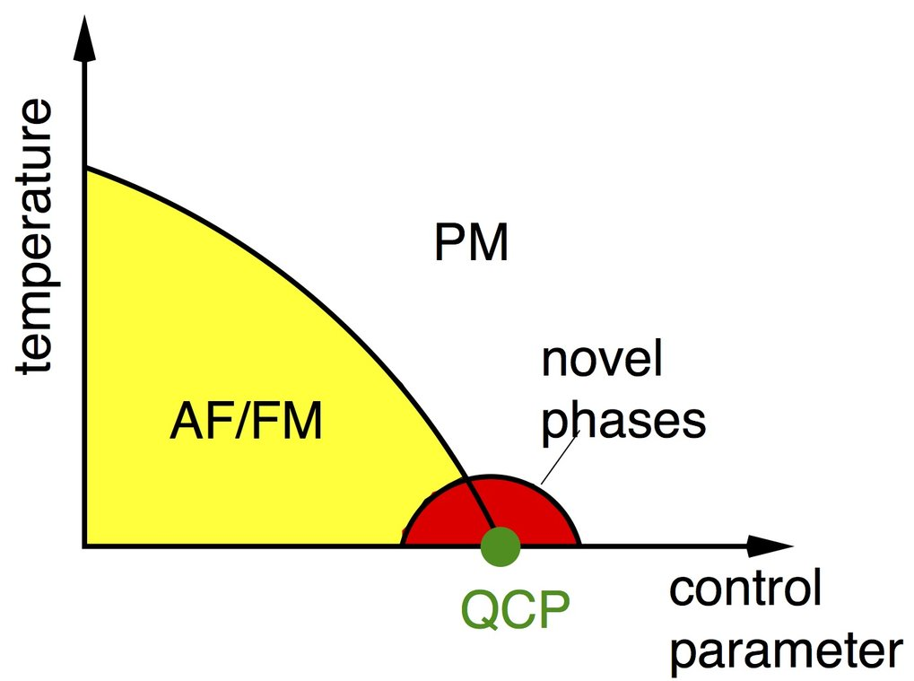 Schematic phase diagram of a quantum critical point (QCP) with the occurrence of novel phases near the QCP from an antiferromagnetically (AF)/ ferromagnetically (FM) ordered ground state to a disordered paramagnetic (PM) ground state at zero temperature.