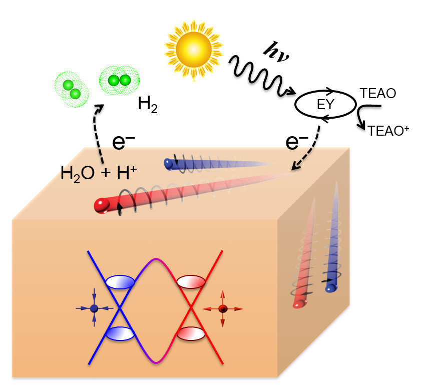 Schematic of the visible light hydrogen evolution reaction (left panel) on the surface of a Weyl semimetal. The right panel shows the superior activity of NbP Weyl semimetal compared to some traditional catalysts.