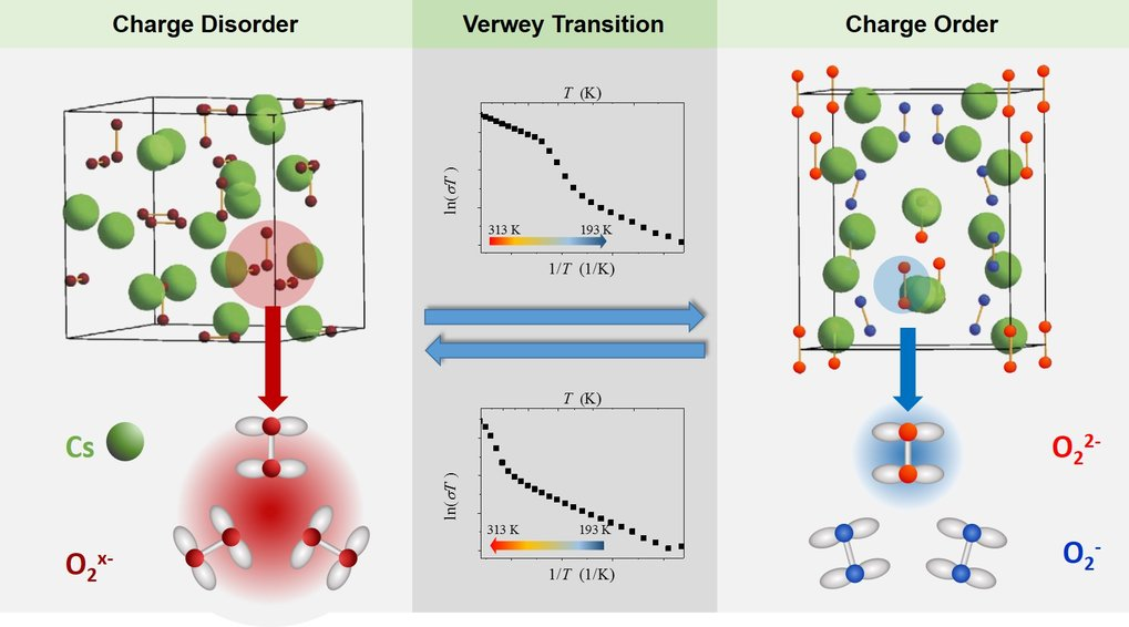 <p>Illustration of the Verwey-type charge ordering transition in Cs<sub>4</sub>O<sub>6</sub>. The charge disordered crystal structure (left) where all negatively charged oxygen molecules are equivalent is transformed into the charge ordered structure (right) with distinct singly charged O<sub>2</sub><sup>-</sup> and doubly charged O<sub>2</sub><sup>2-</sup> ions. The transition is accompanied by a drastic drop or increase in the electrical conductivity (inverse of resistivity) σ on cooling or heating, respectively. The change in conductivity, shown here on a logarithmic scale, reveals a hysteresis.</p>