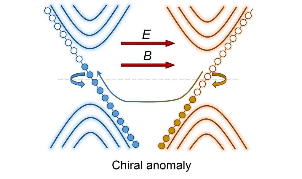 A major consequence of topology in materials is the existence of massless fermions in the form of quasiparticles which are responsible for many exotic phenomena and properties for example; chiral anomaly, gravitational anomaly, anomalous Hall effect, planar Hall effect, extremely high mobility, extremely large unsaturated magnetoresistance etc. Existence of fermions in topological materials goes even beyond the Weyl and Dirac, showing nodal line fermion, double Weyl fermion, triple point fermion, sextuple fermion etc. which also underline the physics of unusual properties.