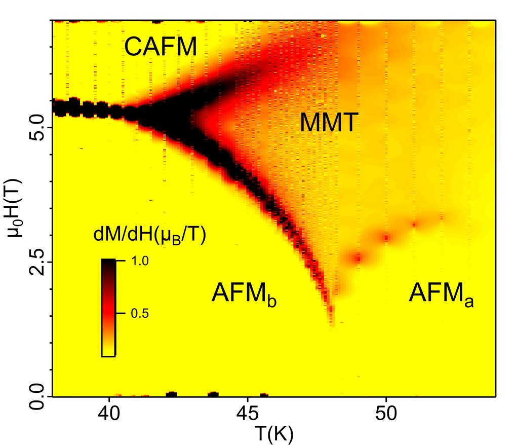 Differential magnetic susceptibility dm/dH obtained by differentiating magnetization with respect to the magnetic field. The color scale represents a magnitude of dm/dH. AFM-a, AFM-b, and CAFM mark two antiferromagnetic and the canted antiferromagnetic regions of the phase diagram. The metamagnetic texture (MMT) was observed in a funnel-like region between AFM-a and AFM-b via small-angle neutron scattering measurements.