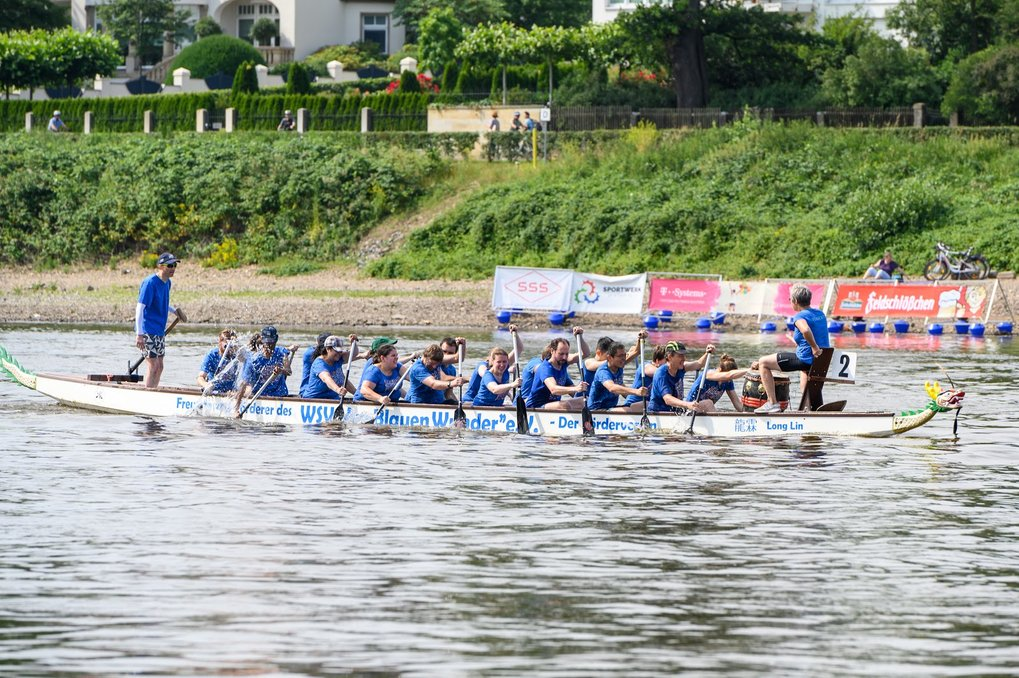 On June 22nd, 62 dragon boat teams competed on the Elbe river in Dresden for trophies and ice cream.